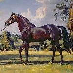 Son in Law<br /><i>art: Alfred James Munnings, 1927r.</i>